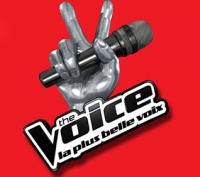 Finale The Voice : Slimane gagnant ?